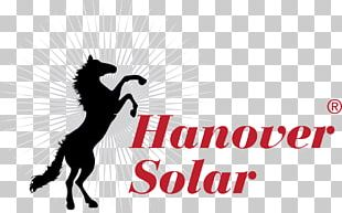 Solar Panels Solar Energy Solar Power Photovoltaic System Photovoltaics PNG