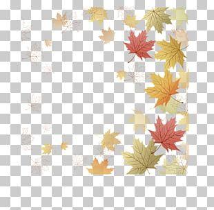 Paper Maple Leaf Japanese Maple Autumn Leaf Color PNG