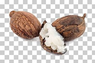 Shea Butter Vitellaria Nut Oil PNG