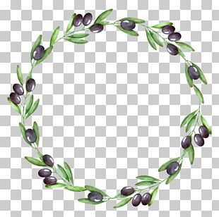 Watercolor Painting Olive Wreath Olive Branch PNG
