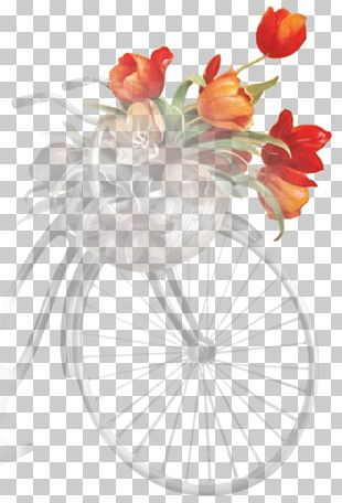 Can't Wait To Decorate Cut Flowers Floral Design Floristry PNG
