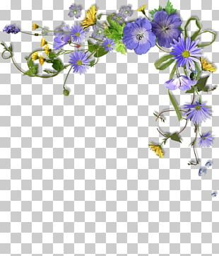 Flower Photography Paper PNG