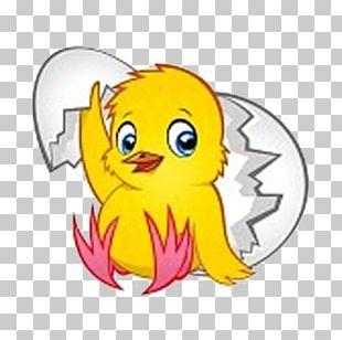 Drawing Dessin Animé Chicken As Food Animaatio PNG