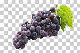 Concord Grape Juice Common Grape Vine Wine Sultana PNG