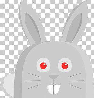 Domestic Rabbit Easter Bunny European Rabbit PNG