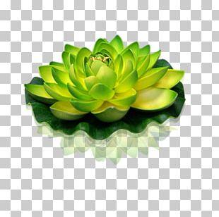 Green Lantern Sacred Lotus Flower Candle PNG