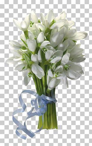 Snowdrop Flower Bouquet Desktop PNG