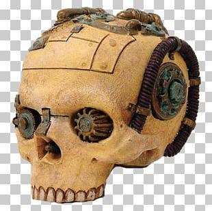 Skull Statue Human Skeleton Figurine Steampunk PNG