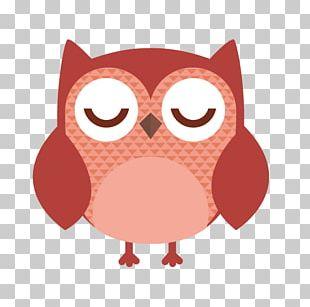 Owl Cartoon Stock Illustration Stock Photography PNG