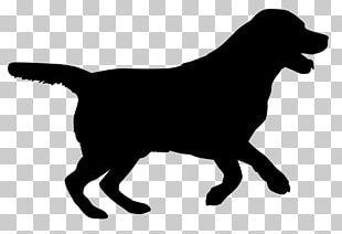Labrador Retriever Puppy Silhouette Dog Breed Cat PNG