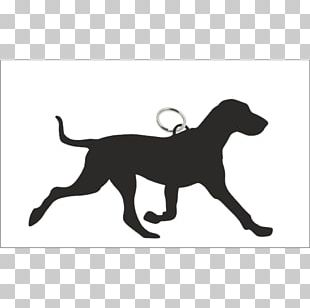 Labrador Retriever Puppy Dog Breed Barbecue Sporting Group PNG