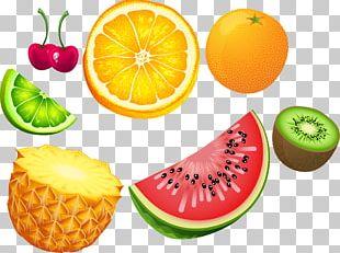 Tropical Fruit Citrus Euclidean PNG