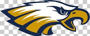 Naples High School Philadelphia Eagles Avon High School Sport Golden Eagle PNG