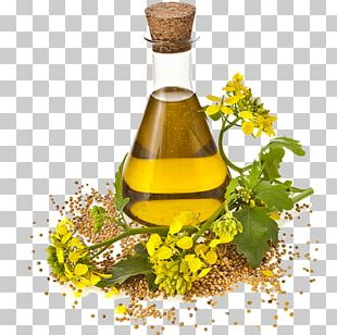 Canola Cooking Oils Rapeseed Seed Oil PNG