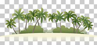 Summer Vacation Beach Island PNG
