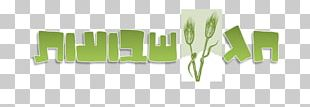 Shavuot Counting Of The Omer Jewish Holiday Torah PNG