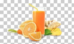 Orange Juice Orange Drink Cocktail PNG