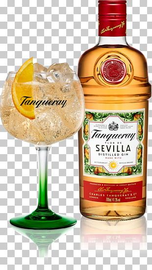 Tanqueray Gin Tonic Water Distilled Beverage Bitter Orange PNG