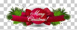 Christmas Card New Year's Day PNG