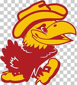 University Of Kansas Kansas Jayhawks Men's Basketball Jayhawk-Linn High School Alumnus National Secondary School PNG