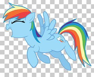 Pony Digital Art Rainbow Dash PNG