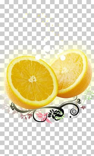Lemon Orange Auglis Illustration PNG