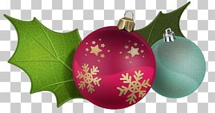 Christmas Decoration Christmas Ornament Mistletoe PNG