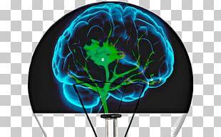 Human Brain Cognitive Training Neuroimaging Reabilitação Neurológica PNG