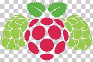 Raspberry Pi Graphics Portable Network Graphics Logo PNG