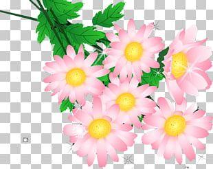 Chrysanthemum Landscape Euclidean PNG