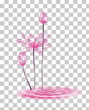 Plant Stem Vase Summer PNG