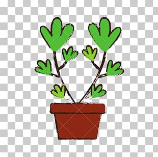 Woody Plant Tree Flowerpot Branch PNG