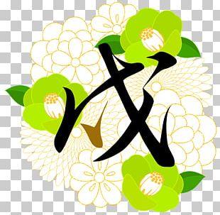 Floral Design Illustration Graphic Design PNG