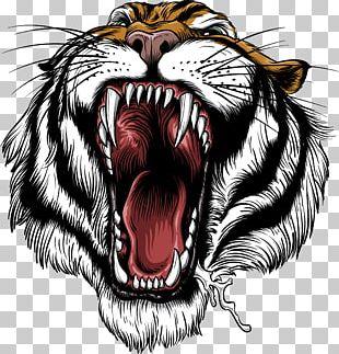 Siberian Tiger Roar Lion Leopard Bengal Tiger PNG