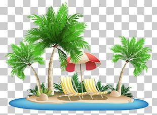 Palm Islands Hawaii PNG