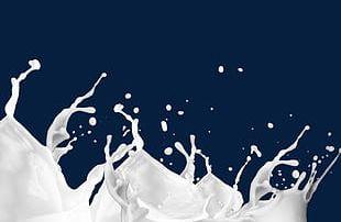 Milk Splash PNG