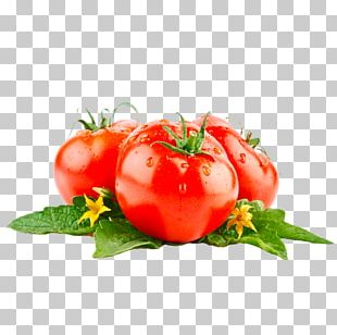 Tomato Juice Food PNG