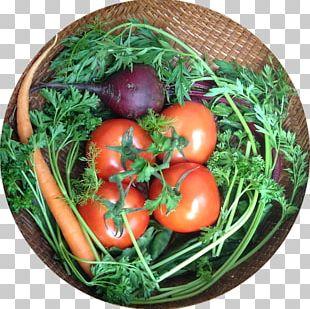 Bush Tomato Vegetarian Cuisine Food Leaf Vegetable PNG