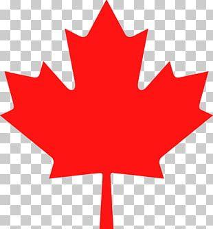 Flag Of Canada Flag Of Quebec Maple Leaf PNG