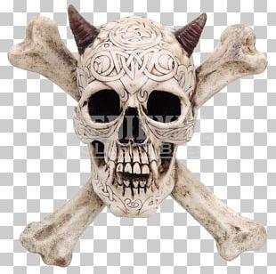 Skull And Crossbones Human Skull Symbolism Skeleton PNG