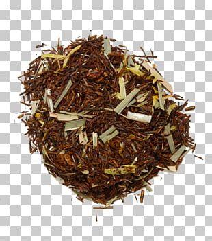 Green Tea Oolong White Tea Iced Tea PNG