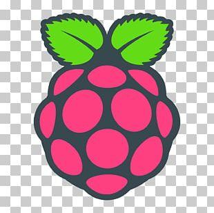 Raspberry Pi Foundation Computer Cases & Housings Raspbian PNG