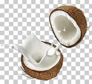 Coconut Milk Coconut Water Soy Milk PNG