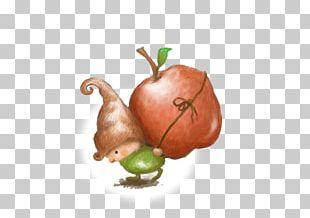 Vegetarian Cuisine Illustrator Bell Pepper Food Illustration PNG