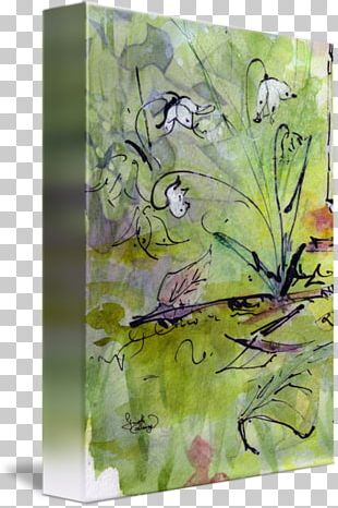 Watercolor Painting Flora Fauna PNG
