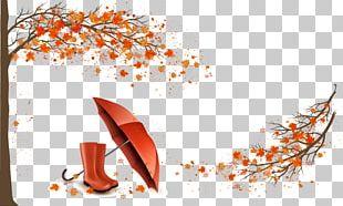 Autumn Umbrella Illustration PNG