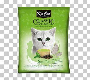 Cat Litter Trays Dog Kitten Pet PNG