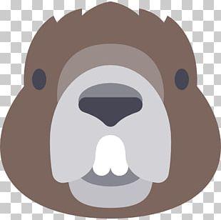 Beaver Ape Bear Animal Computer Icons PNG