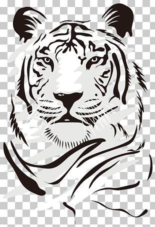 Tiger Euclidean PNG