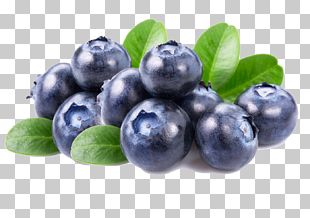 Fruit Salad Blueberry Dried Fruit PNG